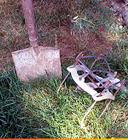 shovel and mole trap